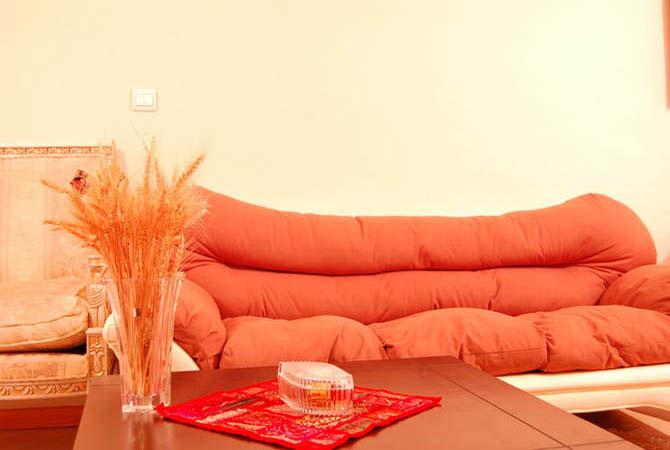 комнатные растения в дизайне квартир